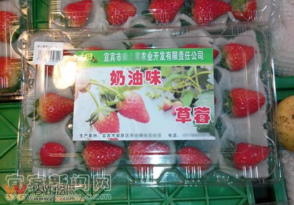 切糕啊 宜宾某超市里看到的天价草莓